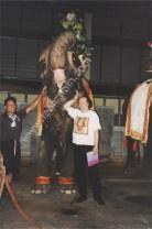 PhuketFantasea4